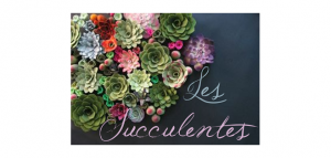 Thème Mariage Les Succulentes Titre 2 Faire Part Selection