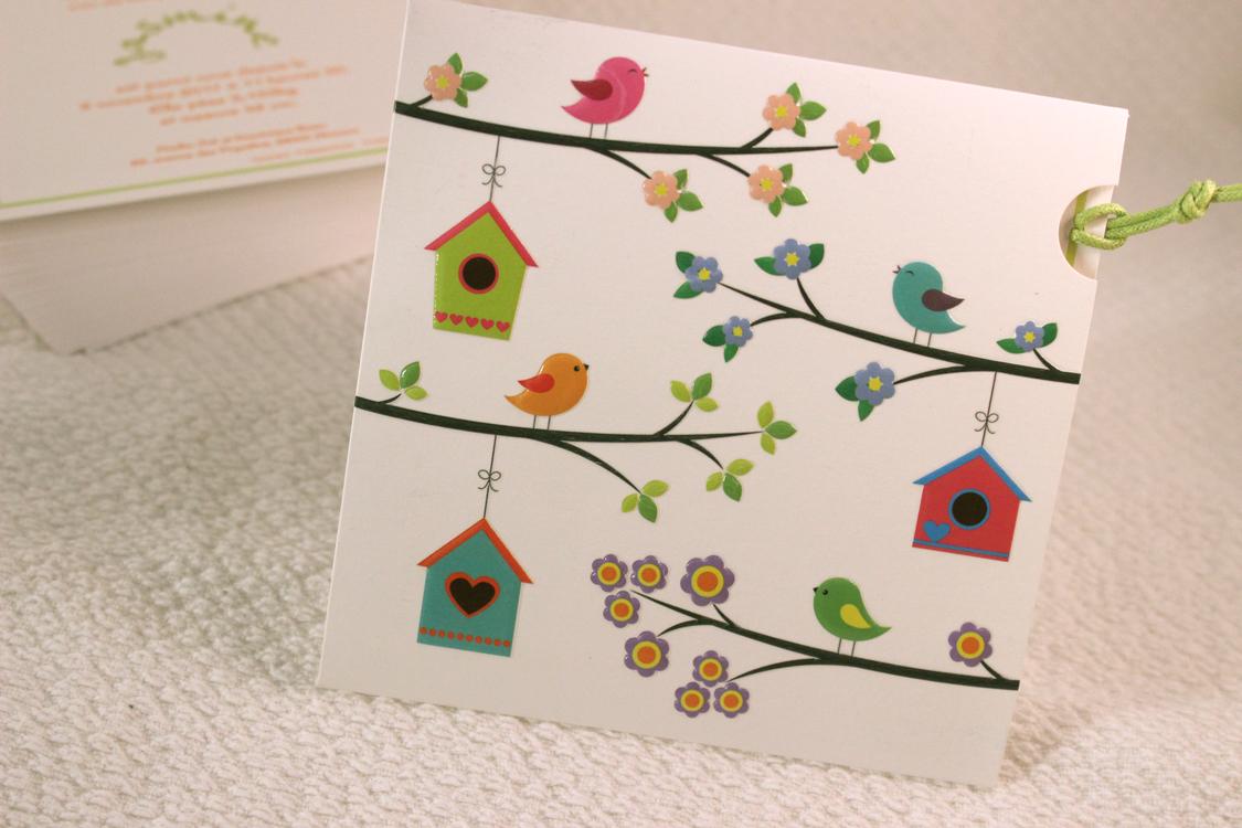 Faire part Naissance 89307 Colore Les oiseaux Faire Part Selection