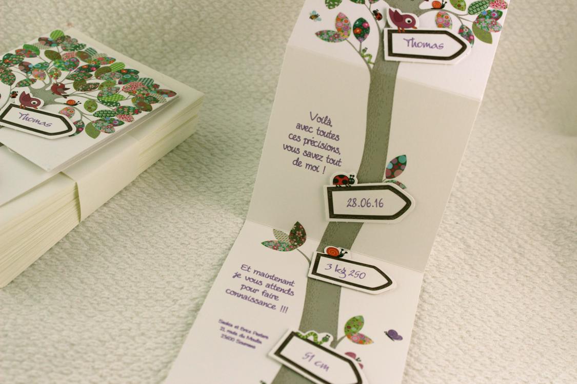 faire part naissance nature l 39 arbre de la vie faire part selection. Black Bedroom Furniture Sets. Home Design Ideas