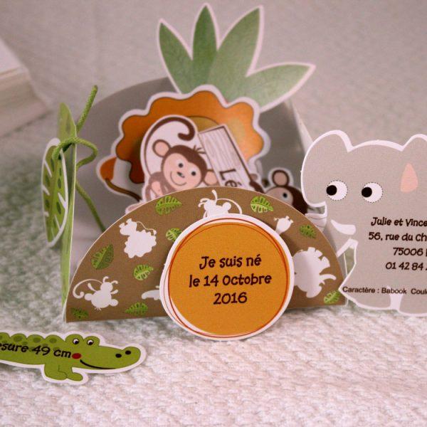 Faire part Naissance 89339 Colore La maison aux oiseaux Faire Part Selection