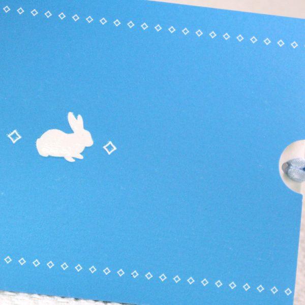 Faire part Naissance 89348 Bleu La pochette Garçon Faire Part Selection 3