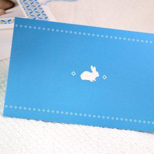Faire part Naissance 89348 Bleu La pochette Garçon Faire Part Selection