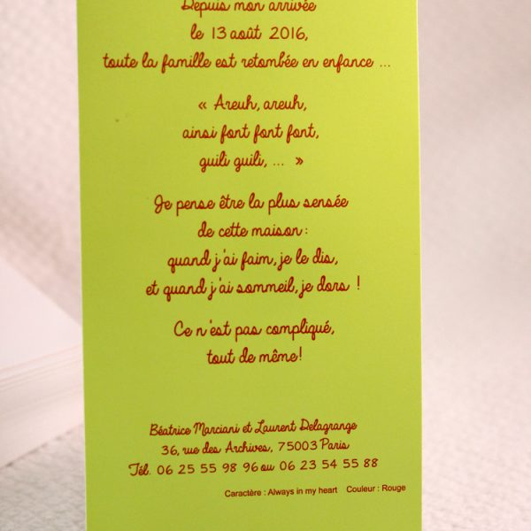 Faire part Naissance 89366 Animaux P'tite poulette Faire Part Selection 2