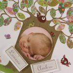 Faire part Naissance 89370 Colore L'arbre magique Faire Part Selection 3
