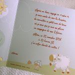 Faire part Naissance 89375 Animaux La ferme en folie Faire Part Selection 2
