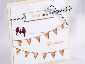 Faire part Naissance 89440 Animaux Les fanions rayés Faire Part Selection