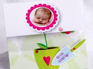Faire part Naissance 89446 Colore Petite fleur Faire Part Selection