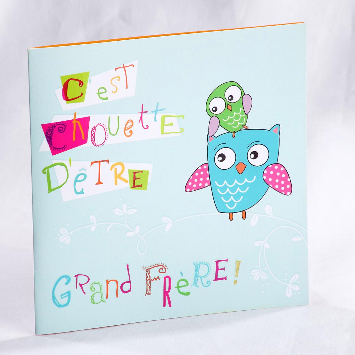 Faire part Naissance 89455 Bleu Chouette grand frère Faire Part Selection