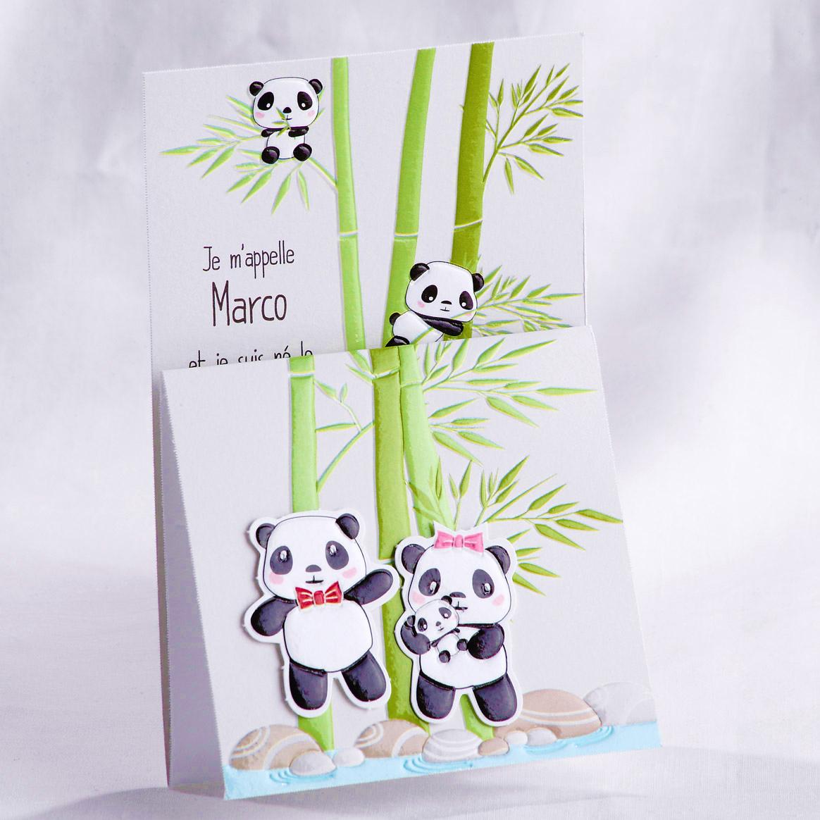 faire part naissance famille dans les bambous faire part selection. Black Bedroom Furniture Sets. Home Design Ideas