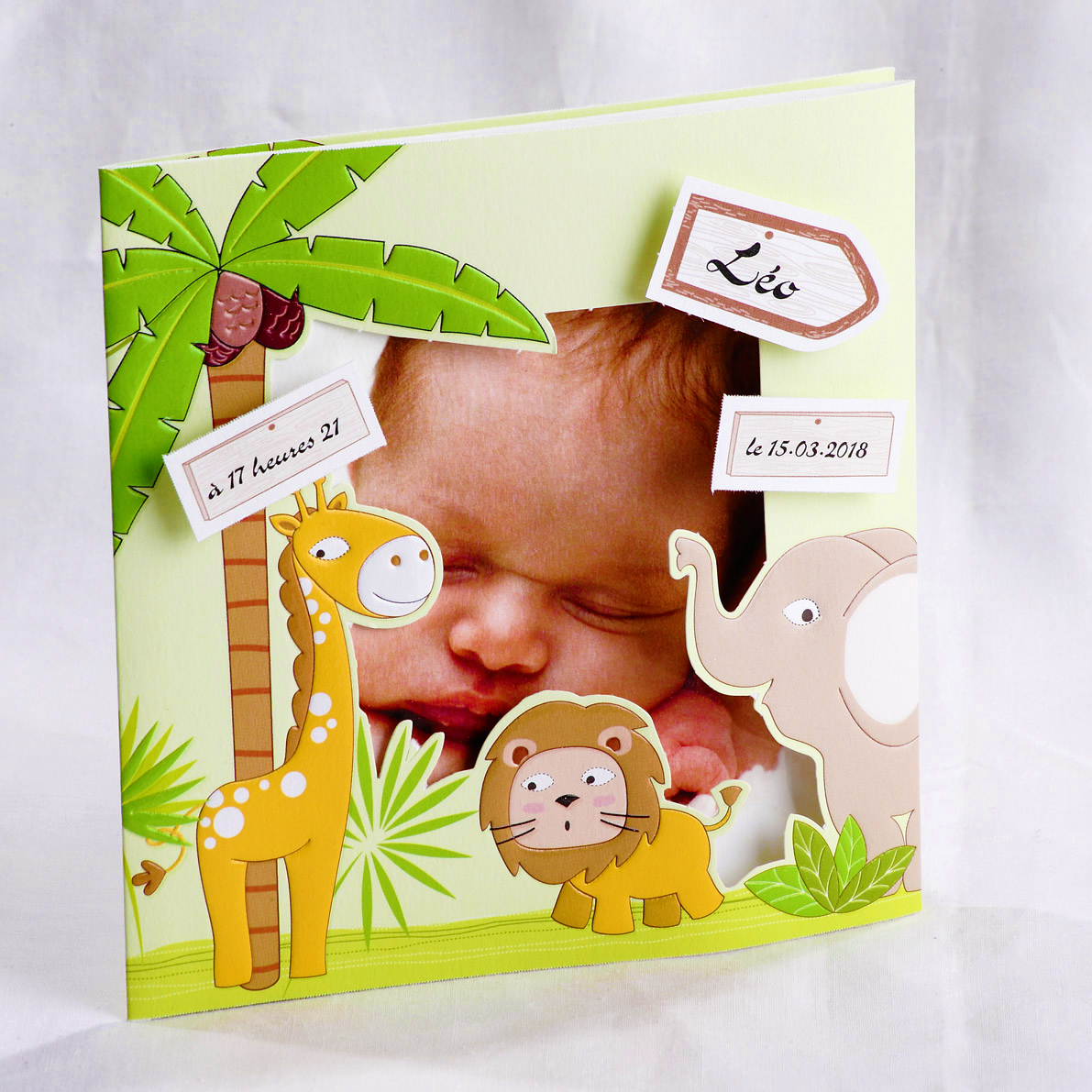 Faire part Naissance 89460 Animaux La savane Faire Part Selection