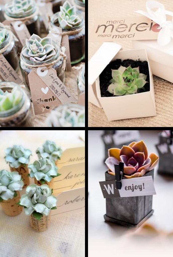 Thème Mariage Les Succulentes Cadeaux Invités Faire Part Selection
